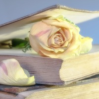 Quanto tempo prima si deve pubblicizzare un libro in uscita?