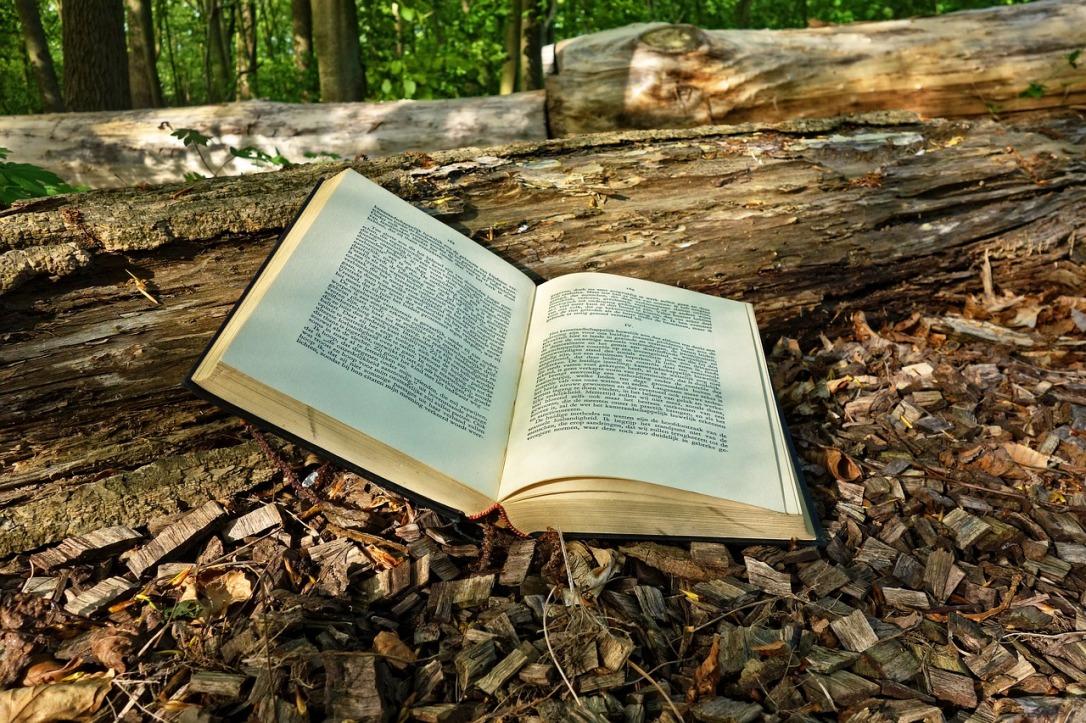 book-3356154_1280