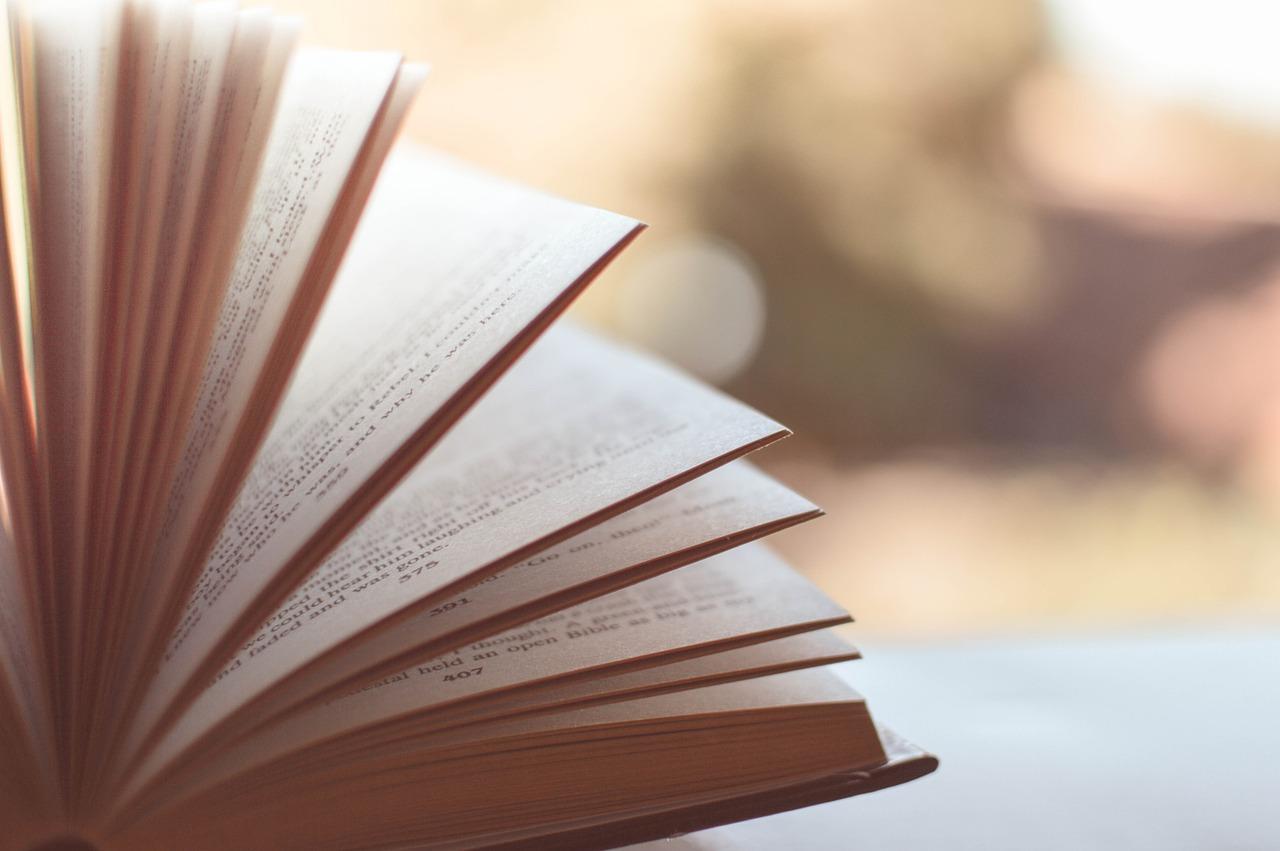 La nuova moda: i titoli dei libri meglio in Inglese.